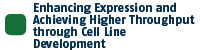 Protein Expression and Cell Line Development